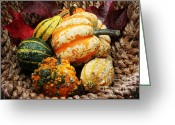 Jutta Pusl Greeting Cards - Basket of Pumpkins Greeting Card by Jutta Maria Pusl