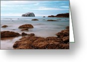 Sand And Sea Greeting Cards - Bass Rock Greeting Card by Amanda Finan