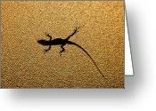 Lizard Greeting Cards - Bathroom Window Lizard Greeting Card by Bill Adams - MomentsNow.com