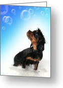 Bubbles Greeting Cards - Bathtime fun Greeting Card by Jane Rix