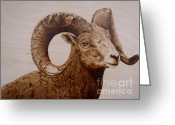 Western Pyrography Greeting Cards - Battle Scarred Big Horn Ram Greeting Card by Adam Owen