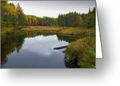 Baxter Park Greeting Cards - Baxter State Park Small Pond in Autumn Maine Greeting Card by Brendan Reals