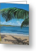 Puerto Rico Pastels Greeting Cards - Bay Beach Across from San Juan Puerto Rico Greeting Card by Dana Schmidt