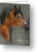 Horse Portrait Pastels Greeting Cards - Bay Horse Portrait Greeting Card by Angel  Tarantella