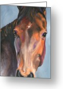 Bay Horse Greeting Card Greeting Cards - Bay Royalty Greeting Card by Susan A Becker