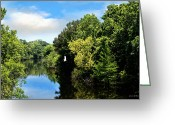 Cajun Greeting Cards - Bayou des Glaises Louisiana Greeting Card by Susan Bordelon