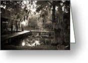 Bayview Greeting Cards - Bayou Evening Greeting Card by Scott Pellegrin
