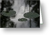 Lilly Pad Painting Greeting Cards - Bayou lilypads Greeting Card by Fran Wolok