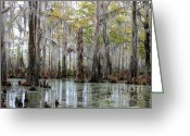Cypress Knees Greeting Cards - Bayou Magic Greeting Card by Carol Groenen