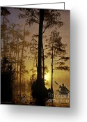Landscape Framed Print Greeting Cards - Bayou Sunrise Greeting Card by Lianne Schneider