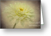 Delicate Mixed Media Greeting Cards - Be a star Greeting Card by Angela Doelling AD DESIGN Photo and PhotoArt