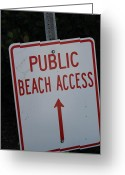 Static Studios Greeting Cards - Beach Access Greeting Card by Static Studios