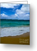 Reception Photo Greeting Cards - Beach Beauty Greeting Card by Cheryl Young