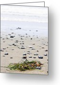 Foam Greeting Cards - Beach detail on Pacific ocean coast of Canada Greeting Card by Elena Elisseeva