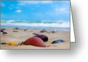 Colours Greeting Cards - Beach Dreams in Skagen Greeting Card by Inge Johnsson