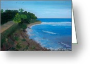 Nicole Jean-louis Greeting Cards - Beach Erosion Greeting Card by Nicole Jean-Louis