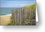 Ocean Path Greeting Cards - Beach fence Greeting Card by Elena Elisseeva