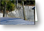 Grayton Beach Greeting Cards - Beach Fence Greeting Card by Judy Wanamaker