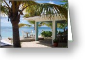 Ocean Beach Greeting Cards - Beach in Grand Turk Greeting Card by Debbi Granruth