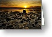 Seaview Greeting Cards - Beach Morning Glory Greeting Card by Svetlana Sewell