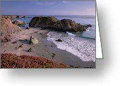 San Simeon Greeting Cards - Beach Near San Simeon Creek With Ice Greeting Card by Tim Fitzharris