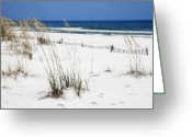 Beach Photograph Greeting Cards - Beach No. 5 Greeting Card by Toni Hopper