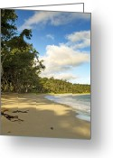 Beach Landscapes Greeting Cards - Beach on Oahu Hawaii Greeting Card by Brendan Reals