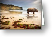 Shoreline Greeting Cards - Beach Rhino Greeting Card by Carlos Caetano
