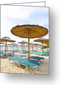 Shade Greeting Cards - Beach umbrellas and chairs on sandy seashore Greeting Card by Elena Elisseeva
