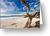 Blue Sky Photo Greeting Cards - Beach View Carmel by the Sea California Greeting Card by George Oze