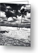 South Beach Greeting Cards - Beach Volleyball Greeting Card by John Rizzuto