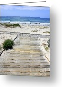 Beach Scene Greeting Cards - Beach Walk Greeting Card by Carol Groenen