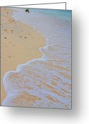 Cebucity Greeting Cards - Beach Water Curves Greeting Card by James Bo Insogna