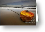 Mooring Greeting Cards - Beached Mooring Buoy Greeting Card by Meirion Matthias