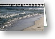 Surf Fishing Photo Greeting Cards - Beachside View 2 Greeting Card by Karen Devonne Douglas