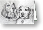 Pencil Drawing Greeting Cards - Beagle Boys Greeting Card by Susan A Becker