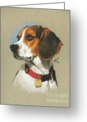 Pet Portrait Drawings Greeting Cards - Beagle Greeting Card by Marshall Robinson