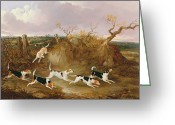 Cry Greeting Cards - Beagles in Full Cry Greeting Card by John Dalby