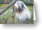 L.a.shepard Greeting Cards - Bearded Collie with Cardinal Greeting Card by L AShepard