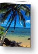 Tropical Island Greeting Cards - Beautiful Anini Beach  Greeting Card by Kathy Yates