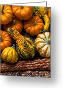 Yellows Greeting Cards - Beautiful autumn Greeting Card by Garry Gay