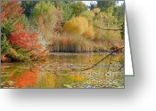 Autumns Mixed Media Greeting Cards - Beautiful Autumn Season - Scenic Idaho Greeting Card by Photography Moments - Sandi