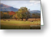 Bales Greeting Cards - Beautiful Cades Cove Greeting Card by Lena Auxier