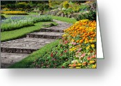 Walk Way Photo Greeting Cards - Beautiful Flowers In Park Greeting Card by Atiketta Sangasaeng