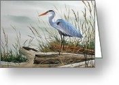 Artist Canvas Painting Greeting Cards - Beautiful Heron Shore Greeting Card by James Williamson