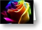 Bold Blossom Greeting Cards - Beautiful Rose of Colors No2 Greeting Card by Pamela Johnson
