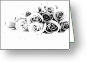 Floral Drawings Greeting Cards - Beautiful Roses Greeting Card by Subesh Gupta