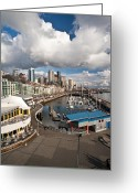 Puget Sound Greeting Cards - Beautiful Seattle Sky Greeting Card by Mike Reid