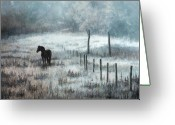 Equines Painting Greeting Cards - Beauty and Light Greeting Card by Liz Mitten Ryan