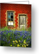 Rustic Photo Greeting Cards - Beauty and the Door - Texas Bluebonnets wildflowers landscape door flowers Greeting Card by Jon Holiday